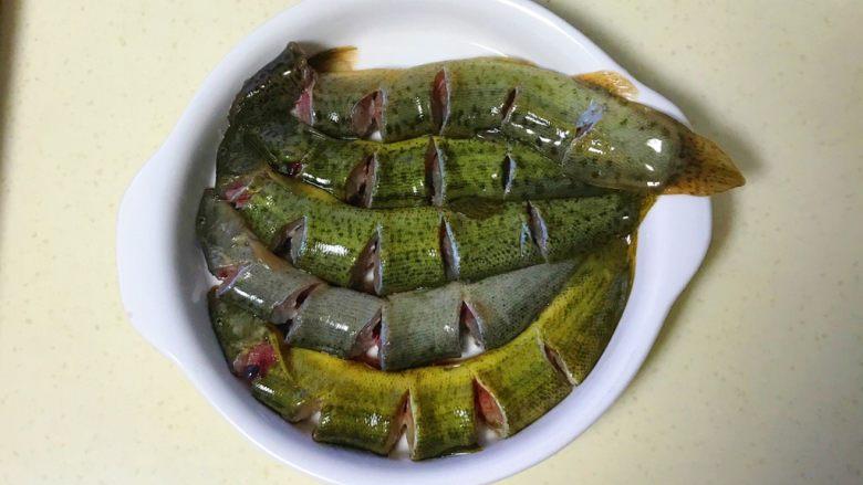 咸肉蒸黄斑泥鳅,全部剪好,在盘子里依次排好