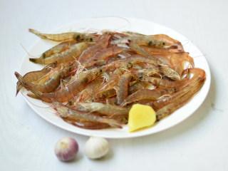 盐水虾,材料准备好