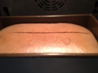 可可蛋糕吐司,放入预热好的烤箱,上下175度,45分钟左右 15分钟时候观察蛋糕表皮如果已经结皮。取出用刀划一道口。然后立即放回继续烘烤至结束。