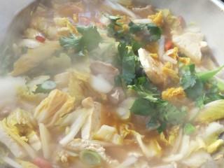 零基础家常炖菜之白菜粉条炖豆腐,最后放入一点香菜,可有可无。
