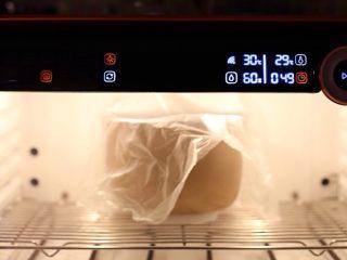 黑麦全麦粗粮吐司,盖保鲜膜入醒发箱,温度29度湿度60%发酵50分钟。