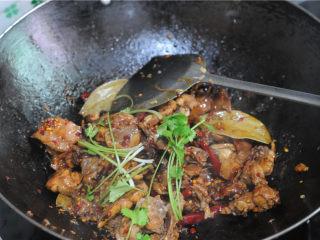 红烧兔肉,锅里吱吱作响的时候,就表示收汁了,开盖,撒入香菜段