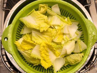 铸铁锅焖蔬菜排骨,娃娃菜洗净切片。