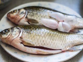 红烧鲫鱼,把鱼收拾好,内脏都不要了。