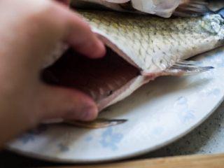 红烧鲫鱼,鲫鱼肚子里有一层黑色的膜,要记得洗干净。
