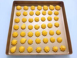 奶油泡芙,在烤盘上挤出适量大小的形状