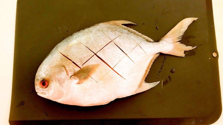 红烧鳊鱼,在鱼身上切菱形块,便于入味,两面都切好