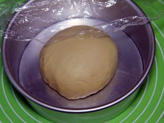金钱小面包,整理后滚圆放入模具中,盖上保鲜膜。