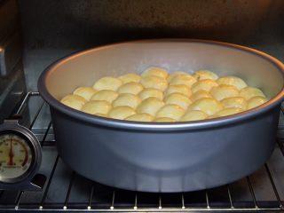 金钱小面包,烤箱预热至180度,模具送入烤箱。