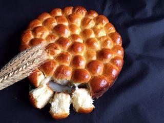 金钱小面包,一款人见人爱的小面包就做好了。