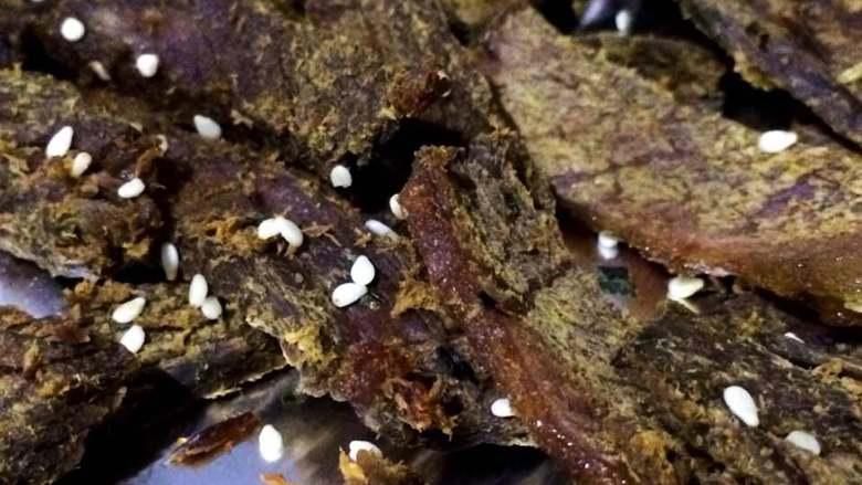 五香牛肉干,烤好后如喜欢可以撒入白芝麻