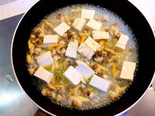 花蛤豆腐汤,加适量水。