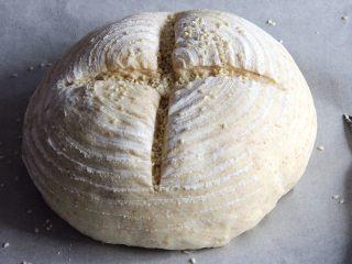 乡村面包+无油无糖版,用美工刀划两刀。