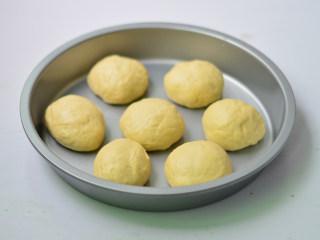 扁桃仁餐包,揉匀,排气,再均匀的分成7等分,放入烤盘中