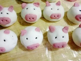 萌萌哒小猪汤圆,一群可爱的小猪猪