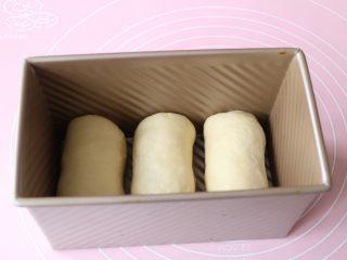 葡萄干吐司,全部卷好放入吐司模具里二次发酵;