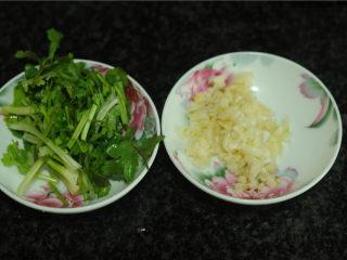 手撕茄子,在蒸茄子的时候准备好配菜,蒜切末,香菜切成小段