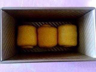 南瓜吐司,卷起放入吐司盒。放烤箱里35度发酵