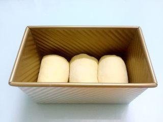 蜜豆吐司,放进模具中,盖上保鲜膜放温暖处发酵