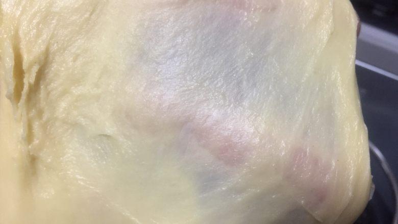 #花样吐司#五花卷吐司,18分钟后面团已经达到扩展阶段,可以拉出透明手膜