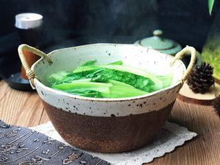 原汁鸡汤焯凤尾菜,原汁原味、鲜美嫩脆,颜色还很碧绿清新