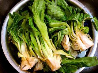 自制腌菜,把青菜拿一部分放入盆子,冷水清洗干净