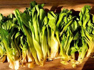 自制腌菜,青菜对半切开,晾晒俩天至青菜变软(这是姐姐寄给我的,已经晾晒了俩天的)