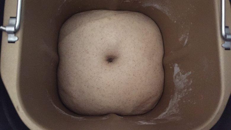 黑麦肉松面包,盖一块湿布,发酵到2-3倍