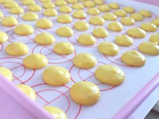 蛋黄小饼干,挤入烤盘
