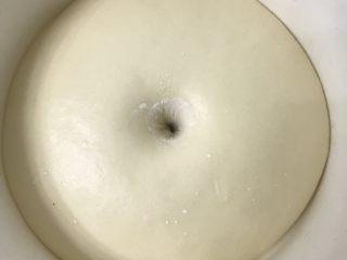 奶香老式面包,放进发酵箱28度一发,2倍大后用手指沾面粉戳洞洞口不回缩不塌陷为好