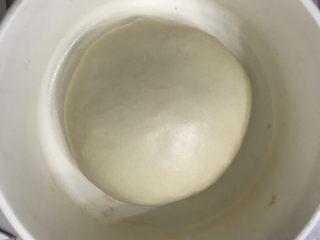 奶香老式面包,拿出来收圆放在发酵盒里