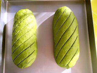 麻薯抹茶软欧,发酵好的面团用锋利的刀片在表面划出自己喜欢花纹,我就斜着划了几条平行线,割包的时候要一步到位,不要一条线划好几刀