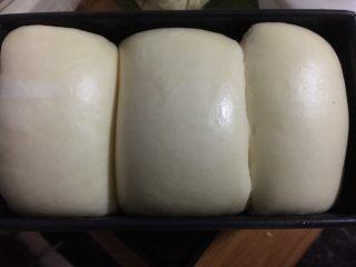 奶酪系列之:奶油奶酪吐司,发酵至9分满,表面刷蛋液或是蜂蜜水