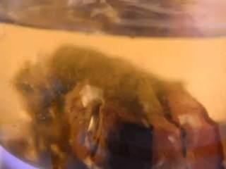 换个方法吃腊肉——干锅腊肉茶树菇,腊肉洗净,沸水下锅,煮30分钟
