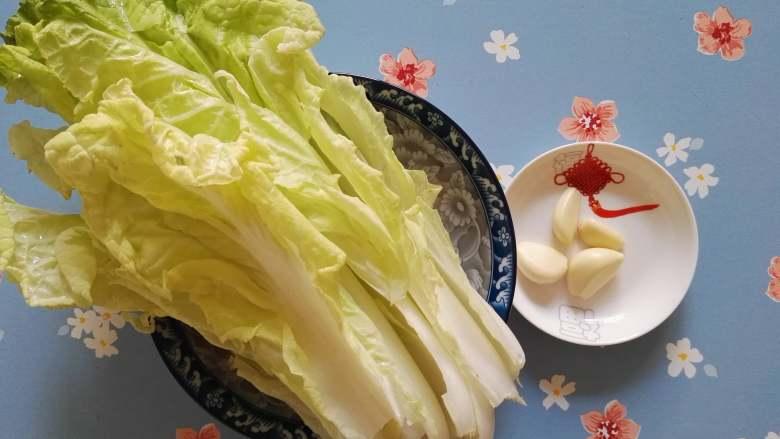 快炒+营养+美味的蚝油小白菜,原料:<a style='color:red;display:inline-block;' href='/shicai/ 112'>小白菜</a>,蒜。