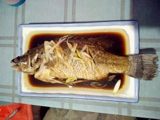 清蒸海桂鱼