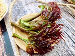 #春食野菜#椿芽烘鹅蛋,椿芽春天野菜之一,采摘刚发出的嫩芽