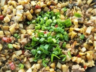 下饭菜春笋腌菜炒肉末,蒜苗叶。