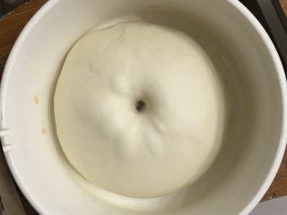 豆沙花朵小餐包,送进发酵箱,温度在28度一发2倍大,手指粘面粉戳洞洞口不回缩不塌陷为一发完成