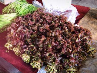 凉拌香椿,这个就是香椿啦,最近市场上很多,购买这样叶片发紫的