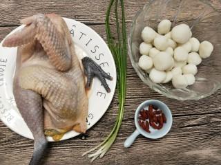鸡汤米粉丸子,将食材洗干净备用,米粉丸子是在菜市场买的(也可以自己做,米粉加盐加水搓成丸子)