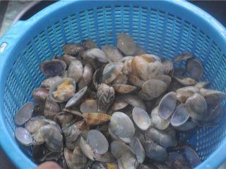 炒花蛤,在流水下一个一个地将花蛤内外洗干净