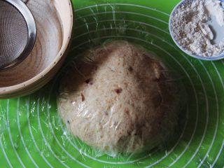 蔓越梅乡村面包,发酵藤篮筛上高筋粉,防止面团粘住。