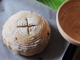 蔓越梅乡村面包,发酵完成后拿出倒扣在盘子里,用美工刀划十字。