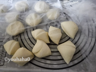 荠菜包子,发酵好的面团揉匀后,切成适当大小的剂子