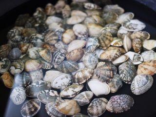 好吃到爆的花蛤西葫芦面,锅中倒入适量清水、加入一勺盐、放入洗净的花蛤
