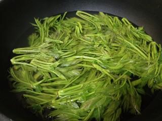 凉拌香椿,将洗净的香椿芽入沸水锅中