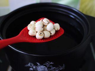 抗皱嫩肤的桃胶银耳莲子羹,砂锅倒入适量清水后、加入莲子