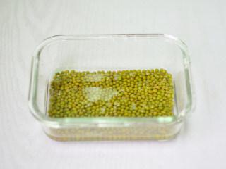 自制绿豆芽,绿豆清洗干净,挑出坏了的豆子,用水浸泡12小时