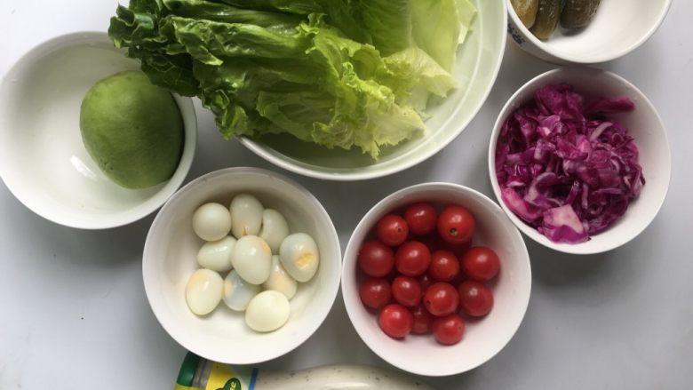 鹌鹑蛋果蔬沙拉,所有食材洗净沥干水分备用,准备好<a style='color:red;display:inline-block;' href='/shicai/ 4856'>沙拉酱</a>。生吃蔬菜首先要选择新鲜的蔬菜(在冰箱中已经存放了一两天的蔬菜不适合生吃),尽量选绿色无公害产品,食用前用盐水浸泡10分钟,能去掉部分有害物质。
